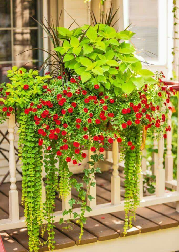 Beautiful Balcony Railing Planter