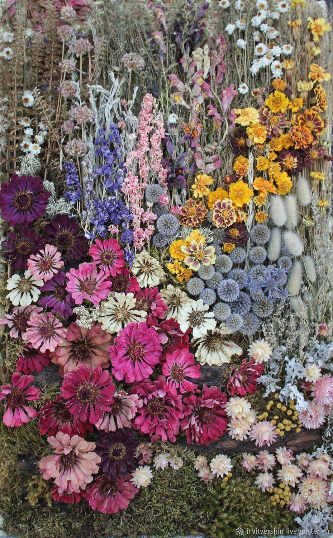 минт картинки коллажи сухоцветы страна, огромное пространство