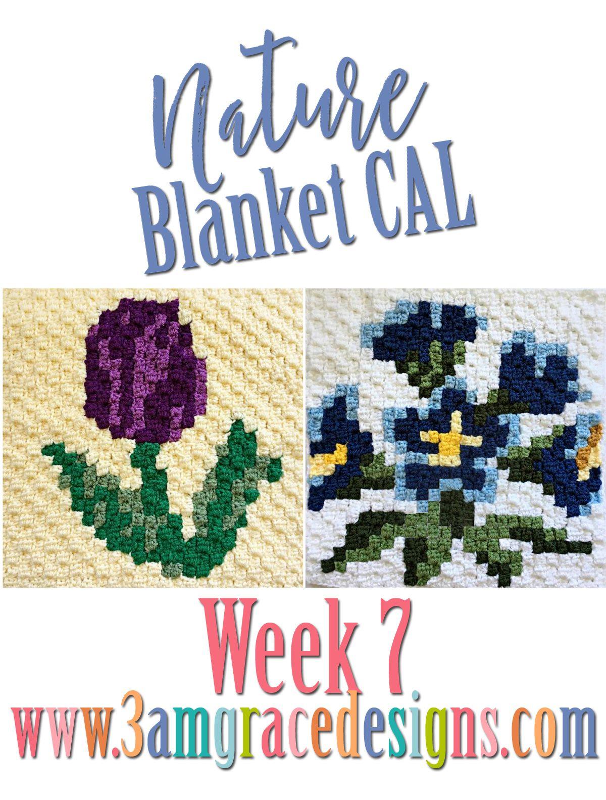 Nature Blanket C2C CAL - Week 7
