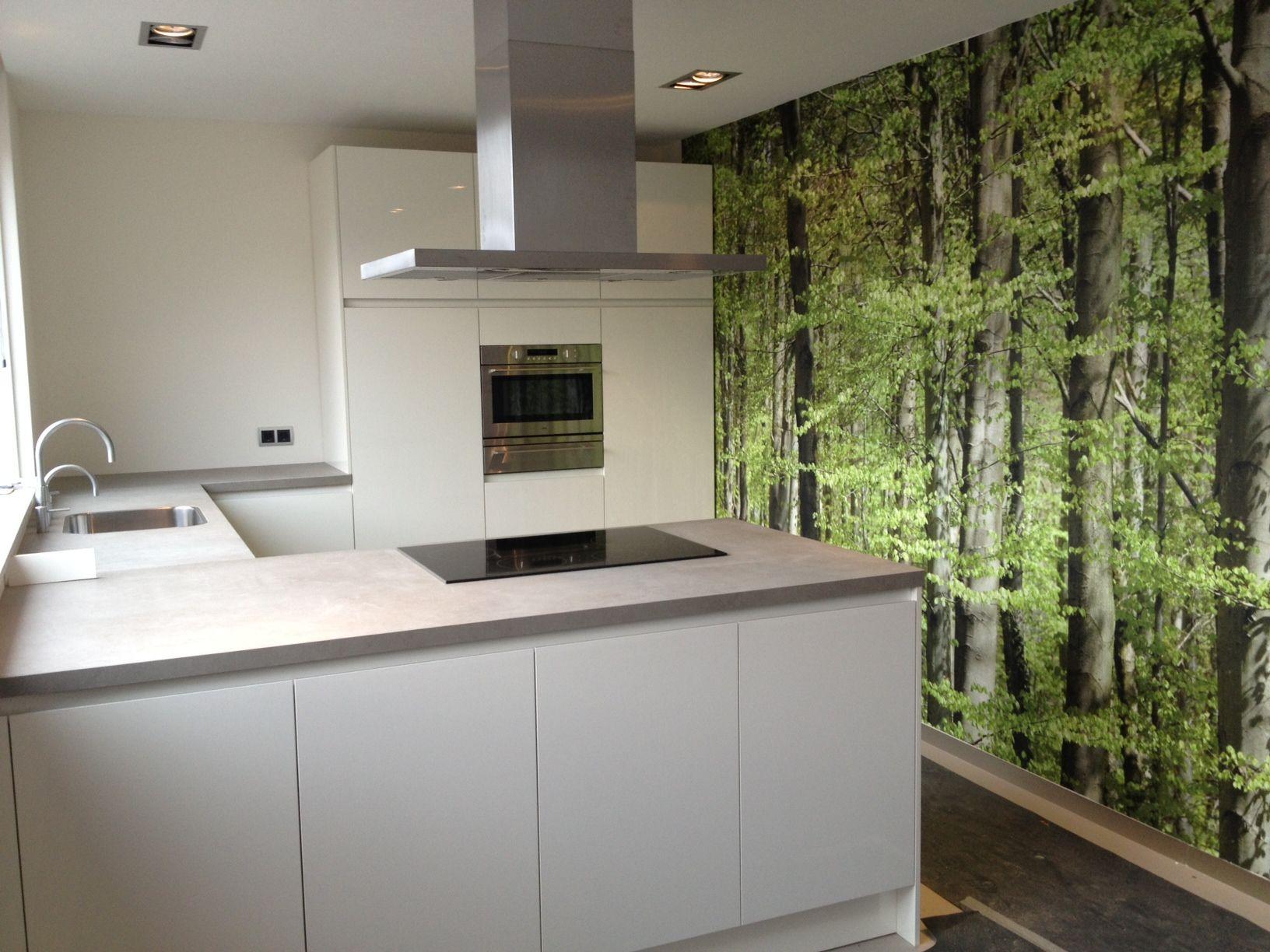 Klein Schiereiland Keuken : Witte greeploze keuken met schiereiland in een bosrijke omgeving
