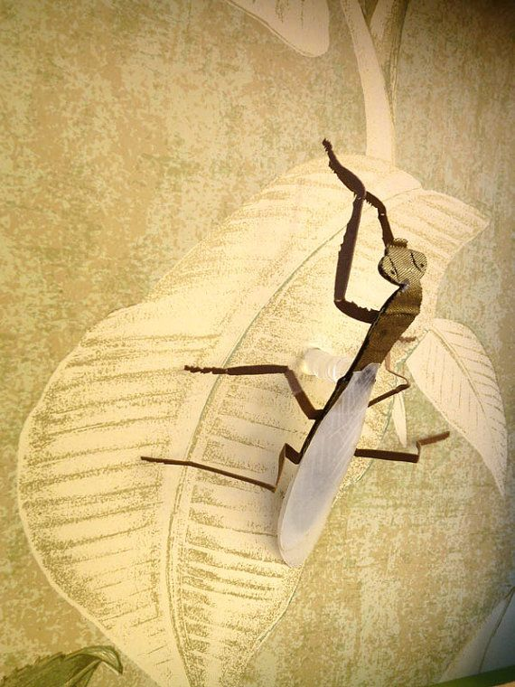 Wall Decor | Praying Mantis | 3D Wall sculpture | Faux Taxidermy ...