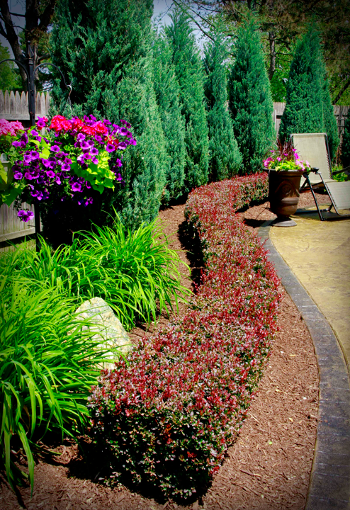 What a great landscaping idea for the patio or pool area for Pool garden edging