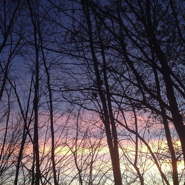 Sola la #natura può offrire spettacoli del genere! #natureforce #nature #sky #skygram #sunset