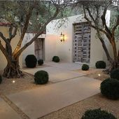 Photo of clean entrance / courtyard, the bushes would be covered with pampas grass or dwarf conifers …