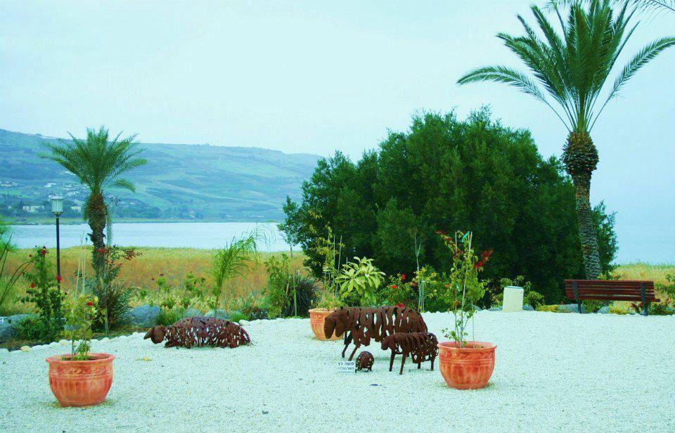 Flora, Dead Sea, Israel