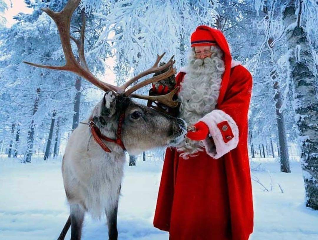 Pin by Dayna Atkins on Christmas!!!   Santa and his ...