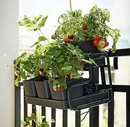 socker ikea colgador balcón plantas macetas | proyecto terraza