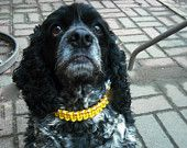 Designer dog collar, dog necklace, custom dog collar. $20.00, via Etsy.