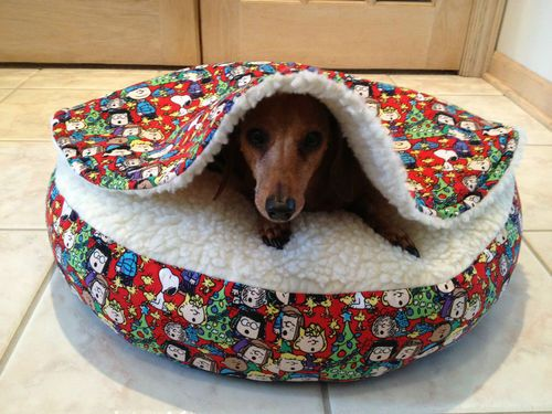 Emporio Armani Classic Watch Dachshund Love Weenie Dogs Dog Love