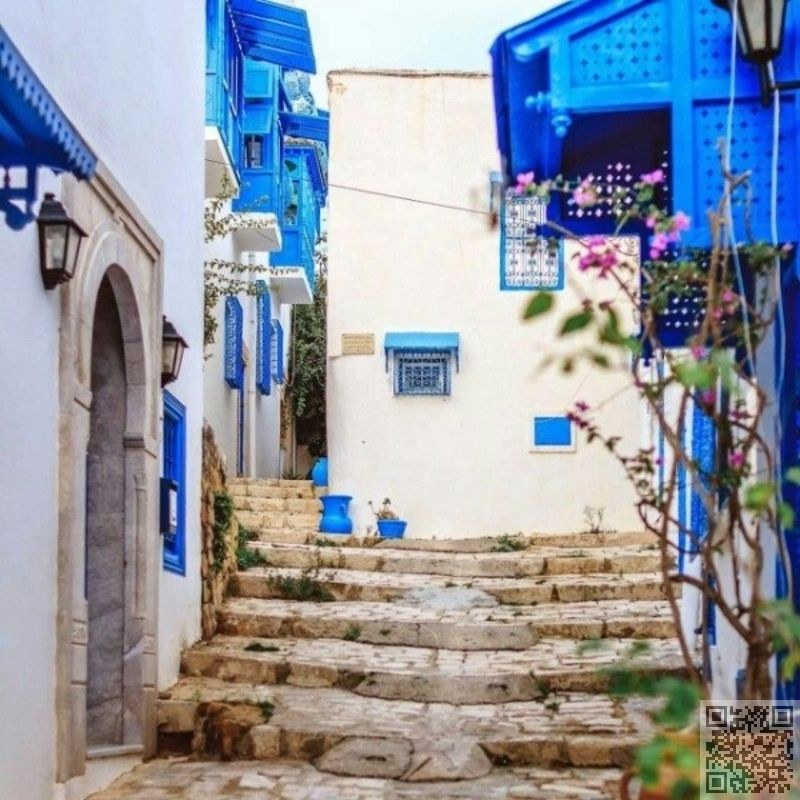 22. Sidi Bou #Said, Tunisia - 33 #Cliffside Towns #Clinging on to Life ... → #Travel #Sightseeing