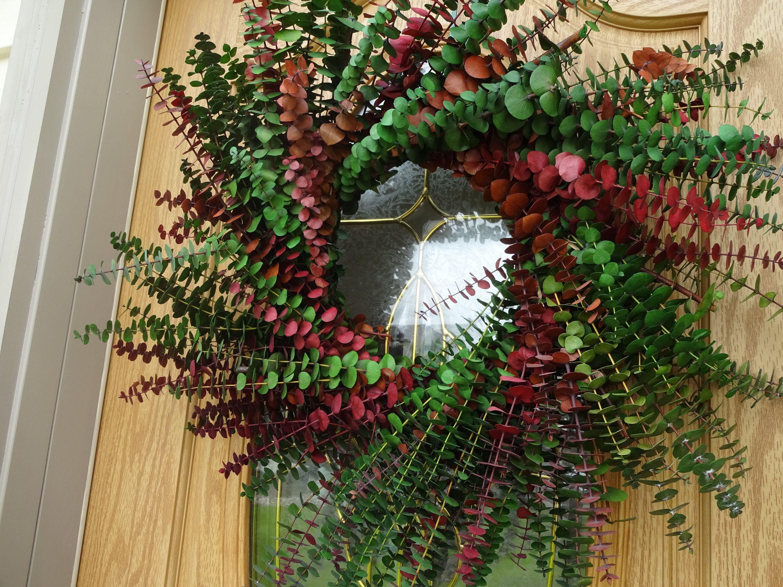 Photo of Eucalyptus Wreath  Fragrant Wreath  Natural Wreath 24″ Wreath  Elegant Wreath  Hand Crafted Wreath  Wall Decoration Home Decor  Wreath