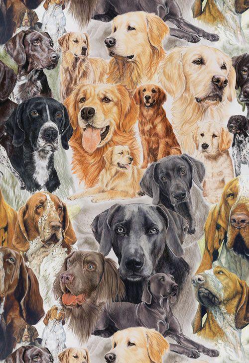 Robert Kaufman Fabric Northern Heritage Panel Jody Bergsma Dog Sled Husky Arctic