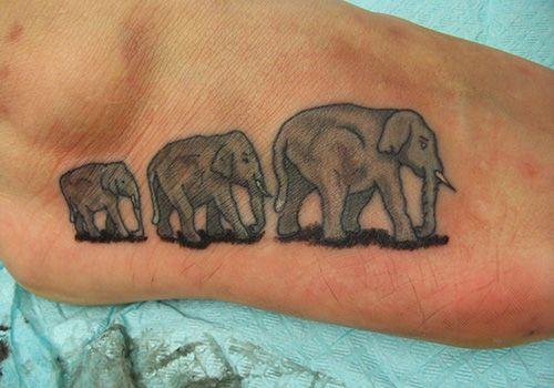 elephant-unique-tattoo-ideas-on-foot ~ http://heledis.com/several ...