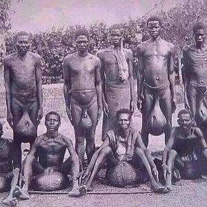 Секс племия афреки