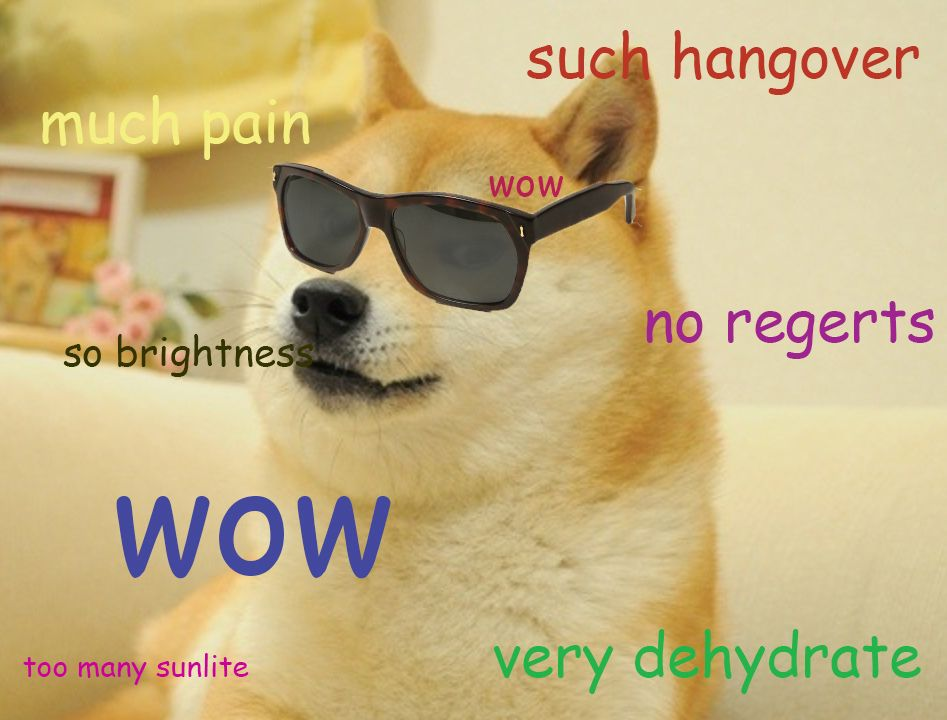 So Drink Many Hungovre Doge Meme Dog Jokes Roflcopter
