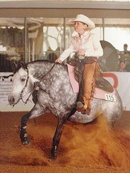 Western Show Horses