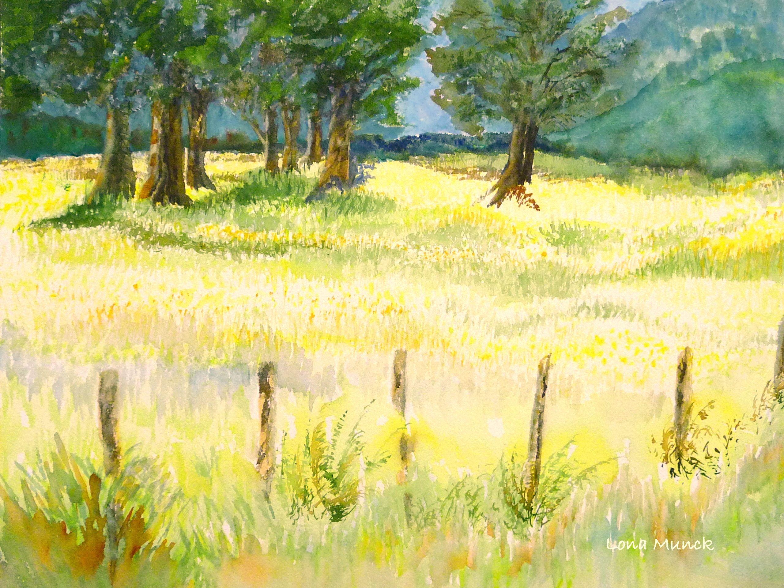 Lona S Watercolor Wild Grass Field Harrison Bc Wild