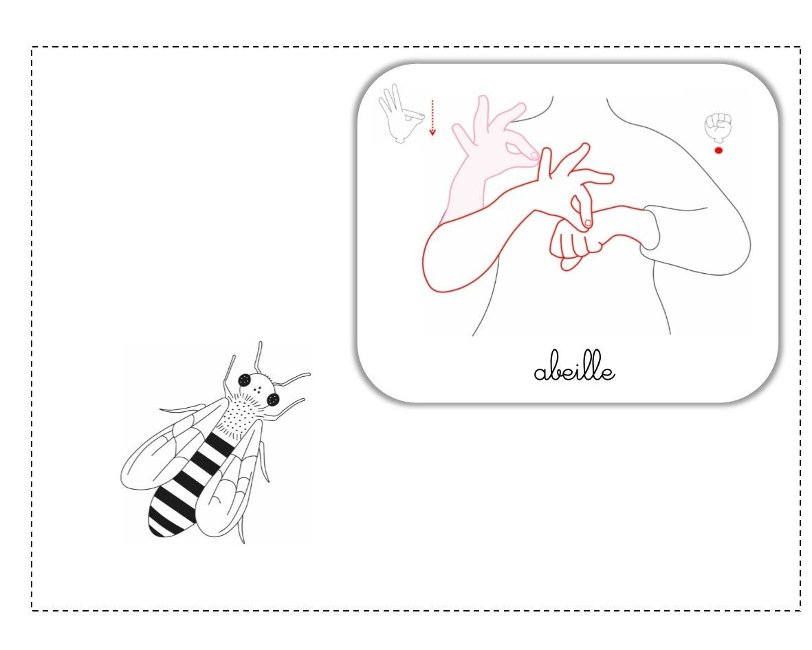 Abeille Lsf Illustration Apprends Moi Des Signes Pinterest Lsf