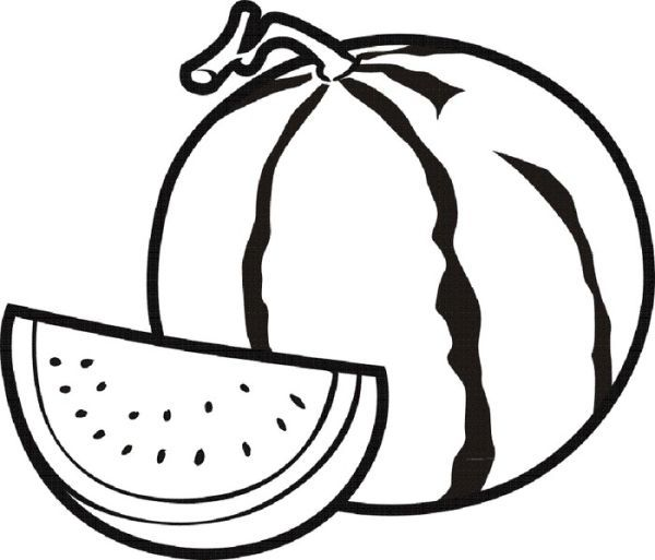 Watermelon Fruit Coloring Pages Semangka Buah Buku Mewarnai