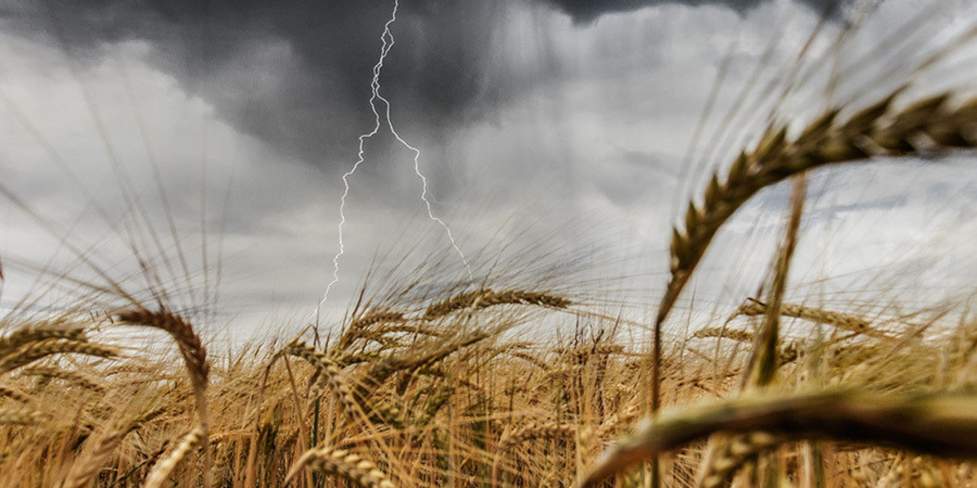 El mundo rural como nunca antes lo habías visto (FOTOS)