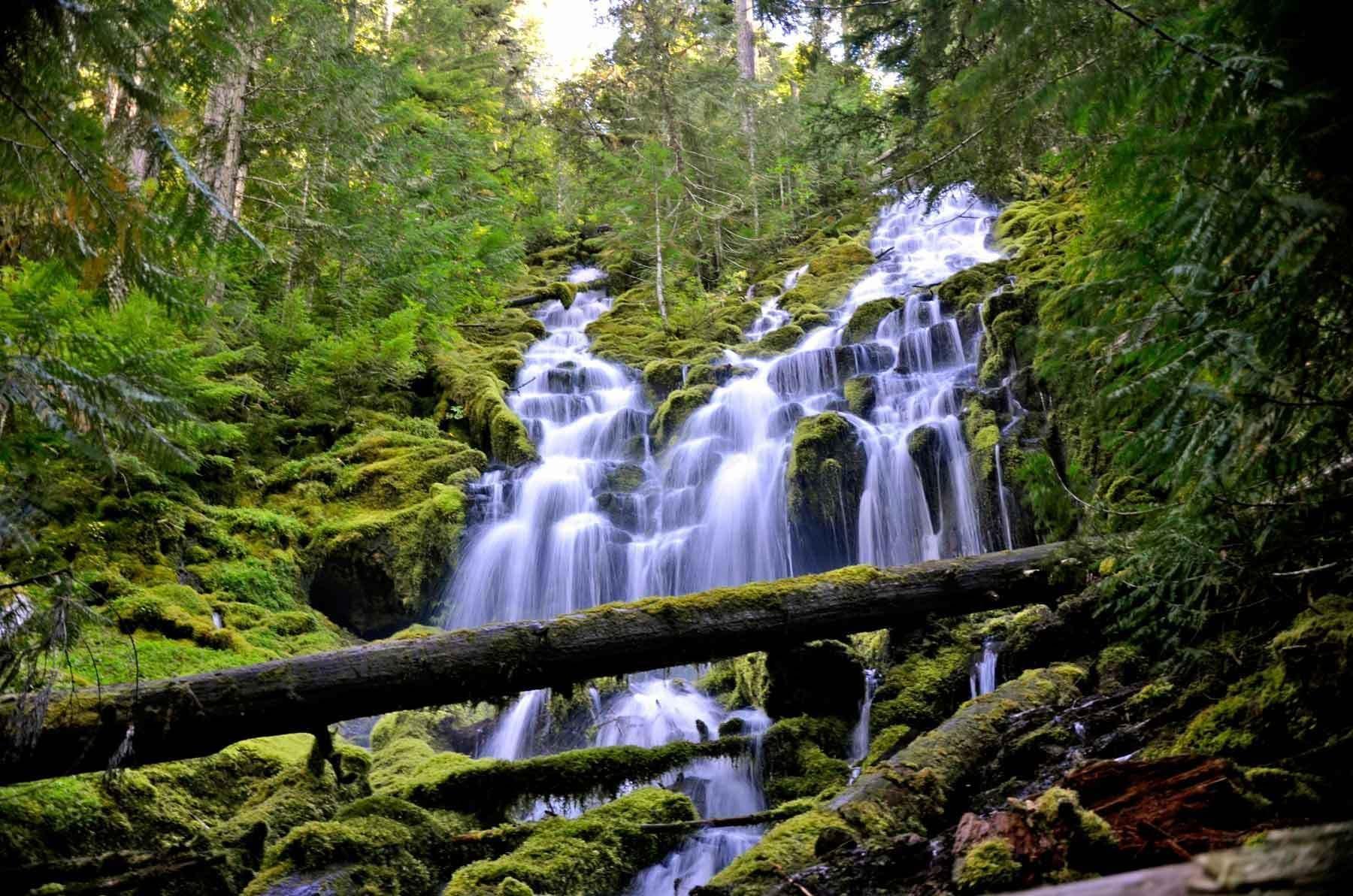 Proxy Falls Loop Trail Oregon