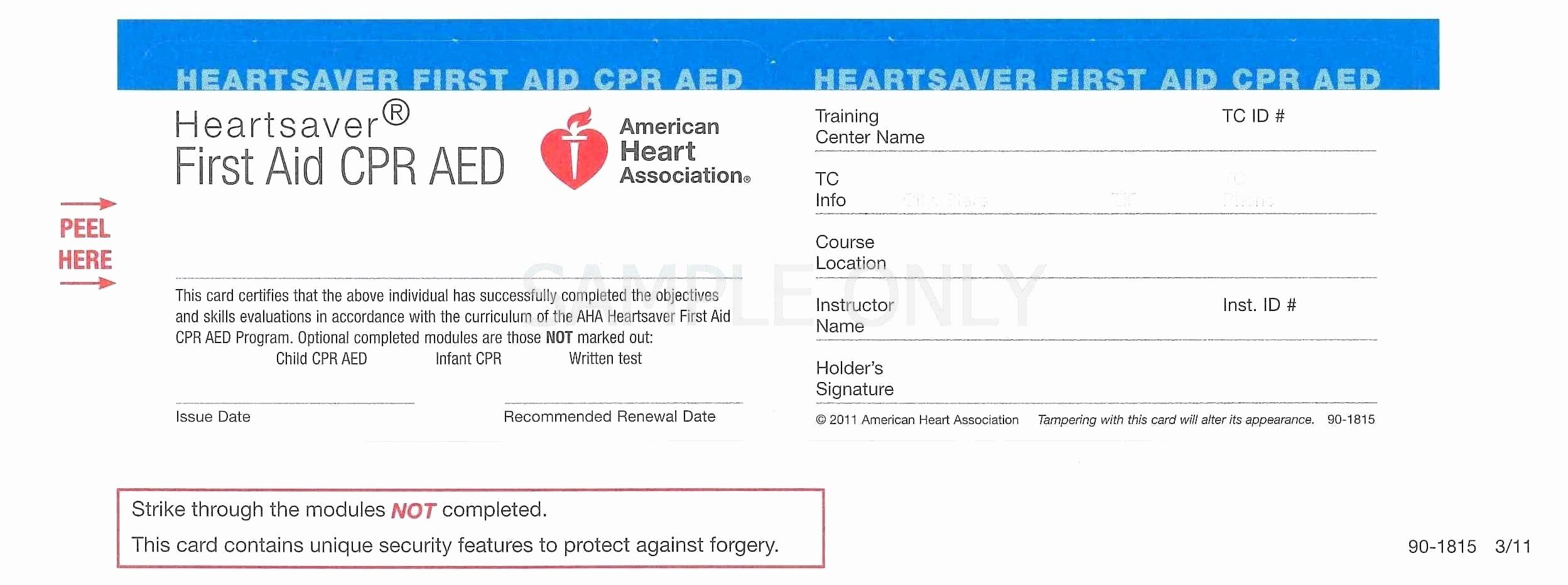 Fake Auto Insurance Card Template Beautiful 11 Elegant Fake Earnings Statement Maotme Life Cpr Card Card Template Business Template