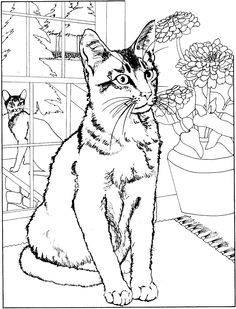 cool coloring pages for adults cool coloring pages cool 14076