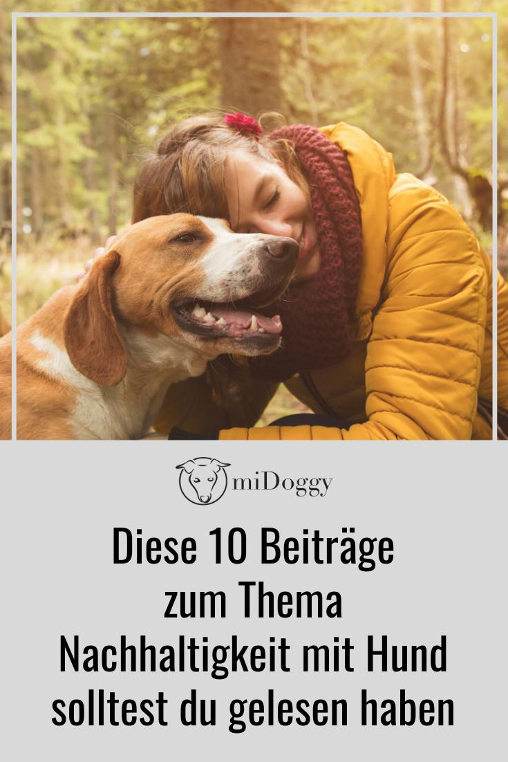 10 Beitrage Zum Thema Nachhaltigkeit Mit Hund Die Du Gelesen Haben Solltest Hunde Nachhaltigkeit Hundehaltung