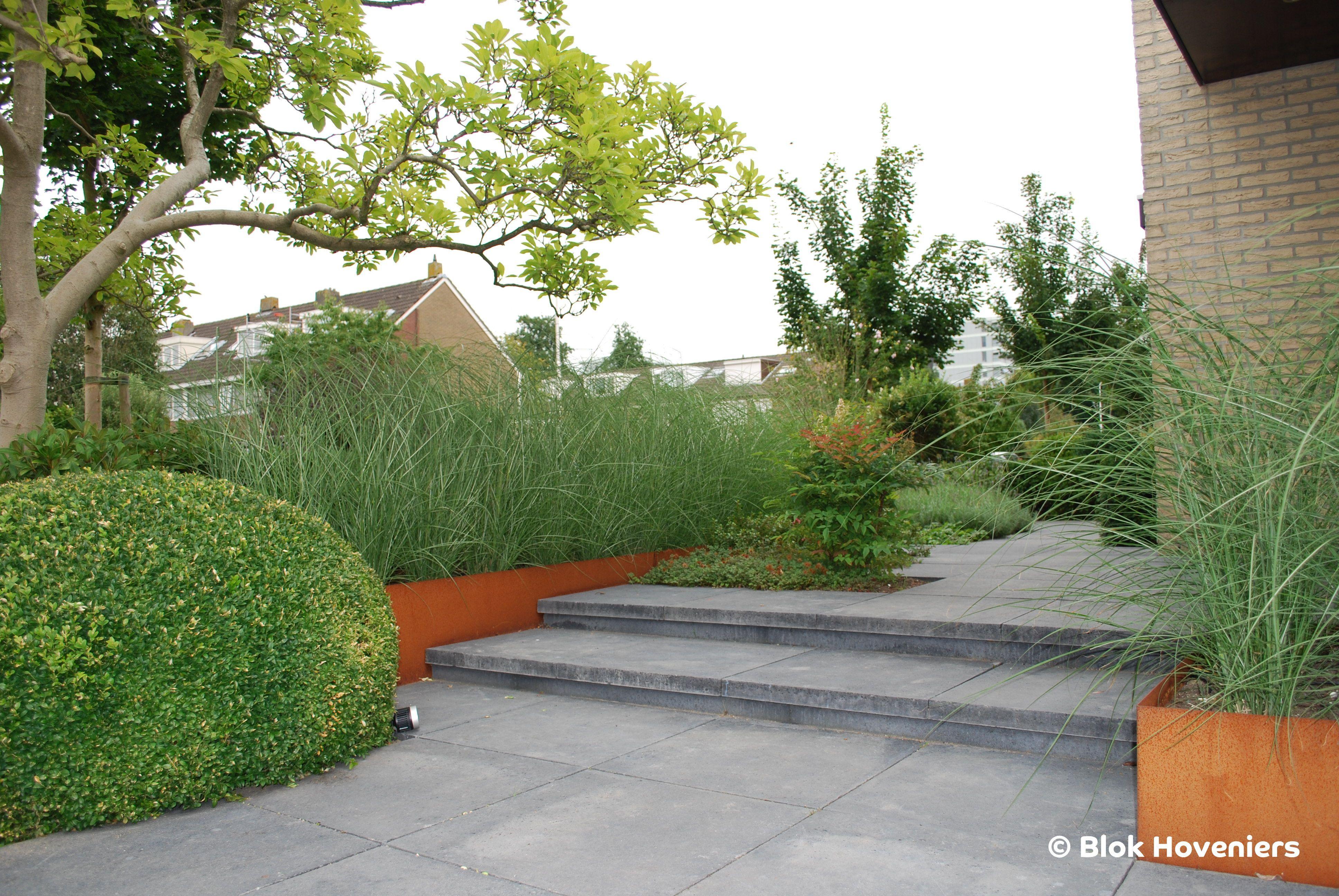 Tuinverlichting In Tegel : Blok hoveniers schellevis tegels in lite tuinverlichting