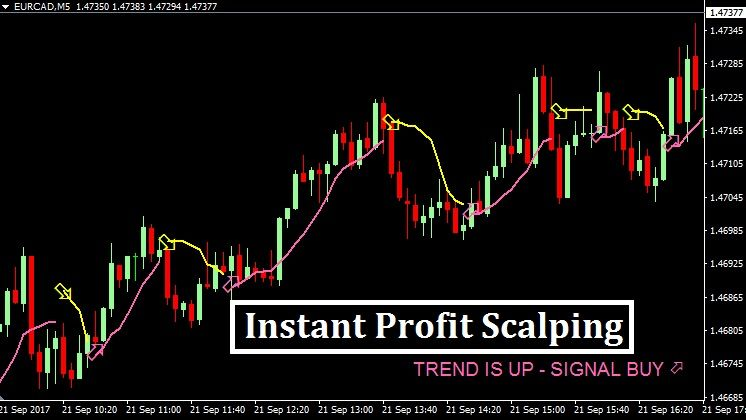 Instant Profit Scalping Free Forex Mt4 Mt5 Indicator System