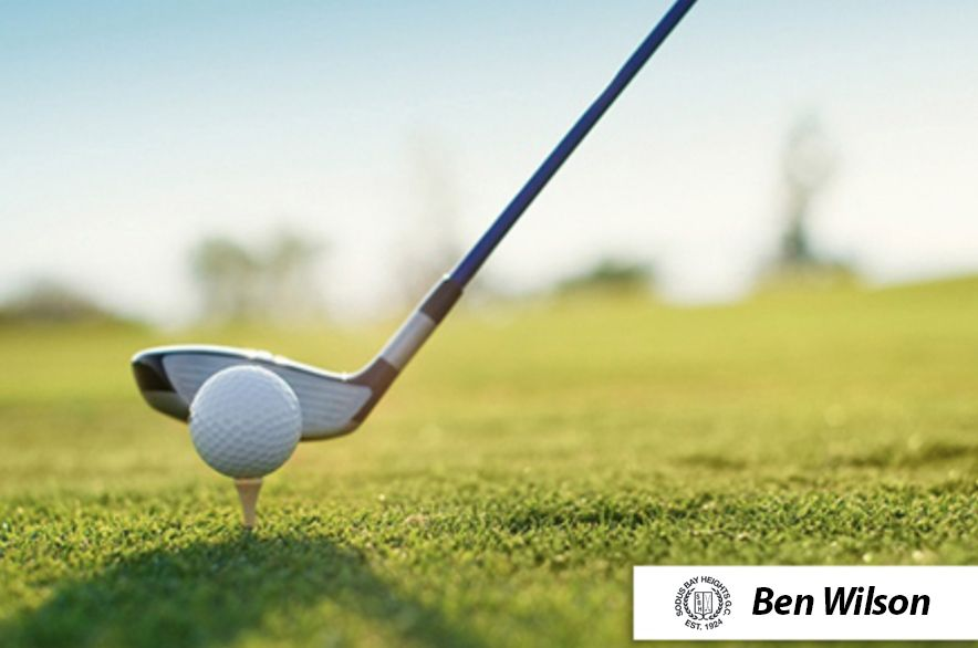 20 For One 45 Minute Lesson With Pga Professional Ben Wilson At Sodus Bay Heights Golf Club In Sodus Bay Near Rochester 60 Value Golf Lessons Golf Golf Trip