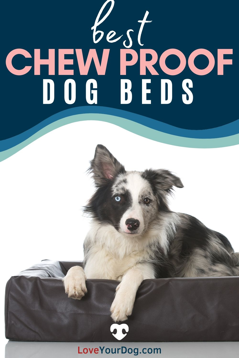 Best Indestructible Chew Proof Dog Beds Durable Beds For