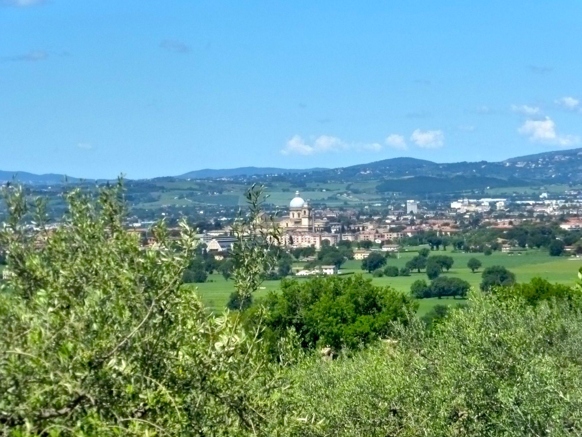 Santa Maria degli Angeli #Assisi