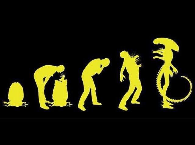 Alien evolution chart   Alien (series)   Alien vs predator
