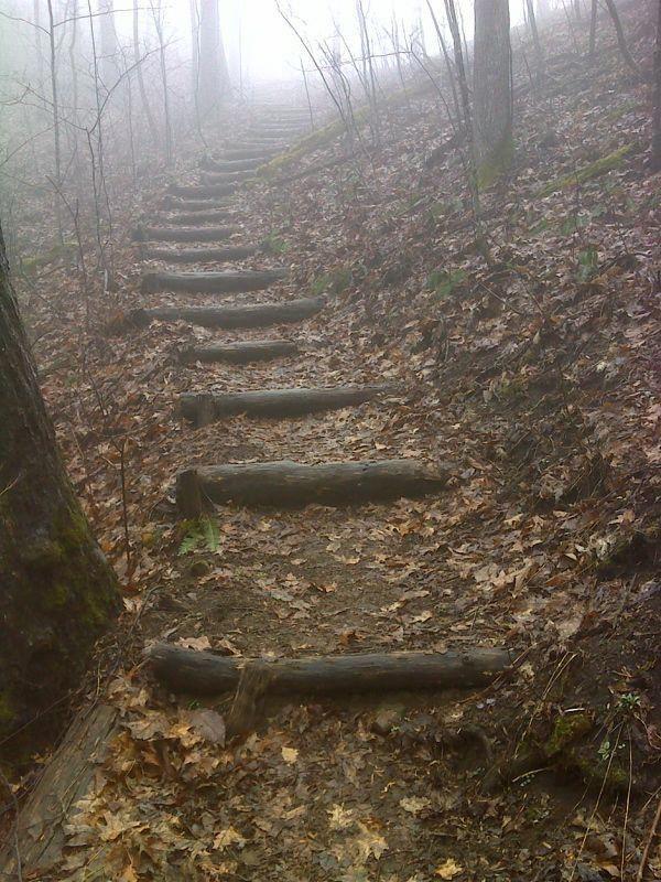 Photo of Garden paths hill #garden #paths _ gartenwege hügel _ jardin chemins colline _ …
