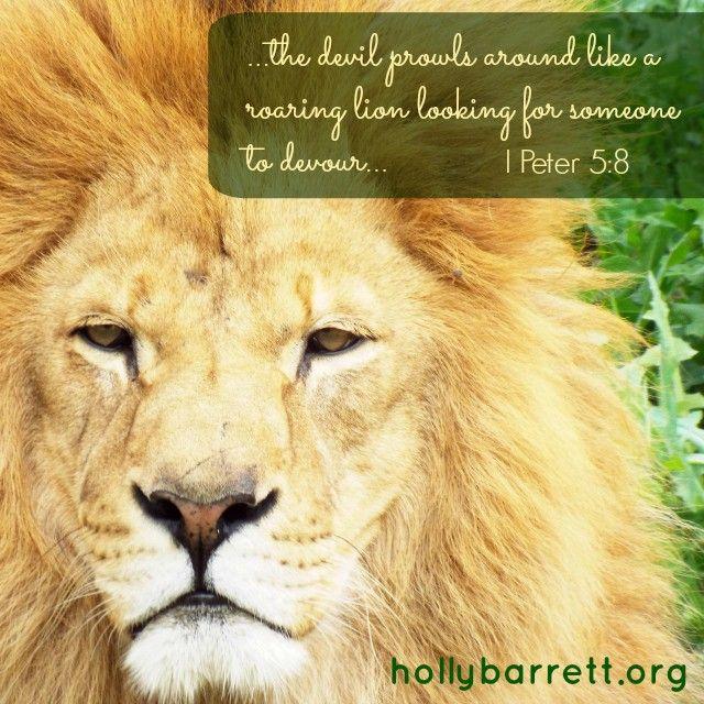 Be alert and of sober mind | Holly Barrett #SundayReflection #ReclaimingaRedeemedLife #BibleGateway #bgbg2