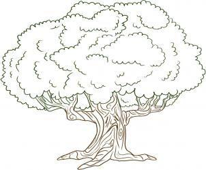 Oak Tree Z S Mosaic Template Oak Tree Drawings Tree Coloring Page