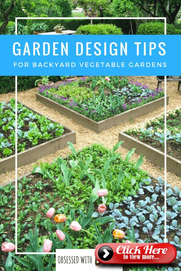 Vegetable Garden Design: How To Plant Your Veggie Patch ...