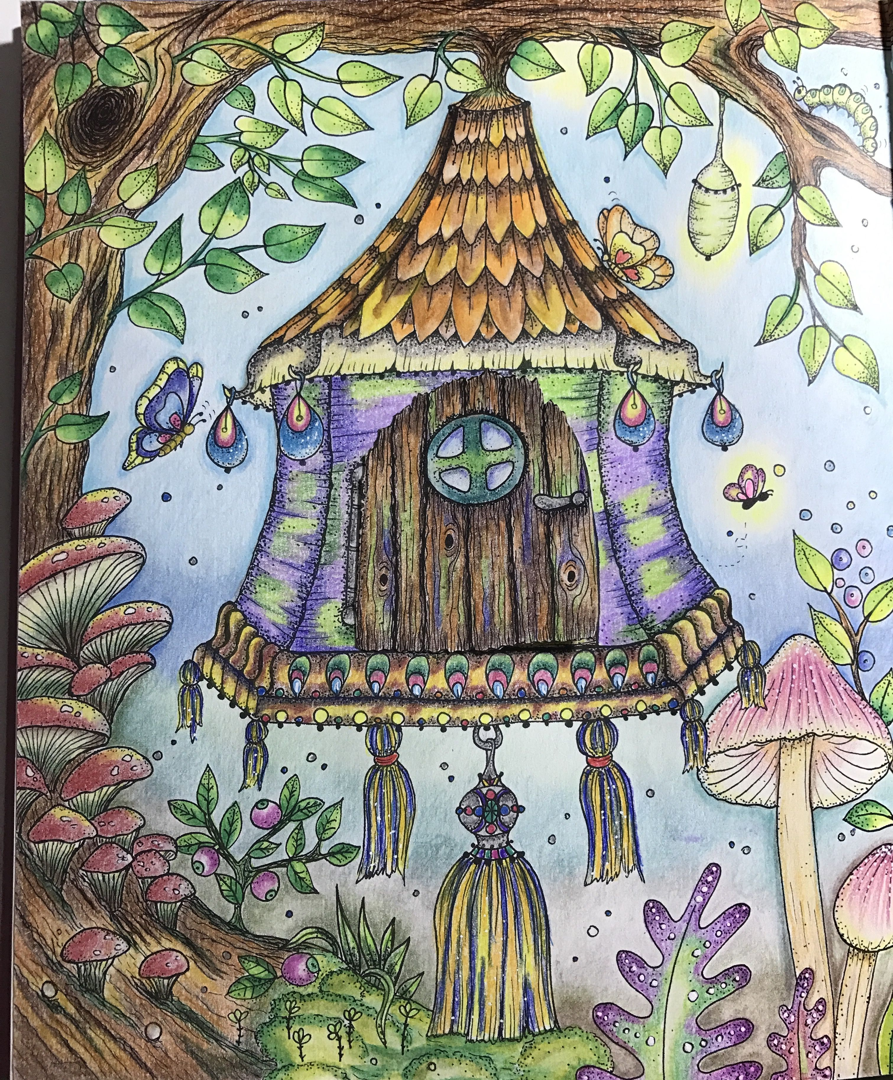 Magical Delight Coloring Book