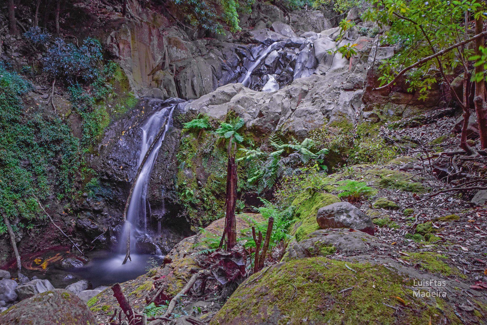 https://flic.kr/p/JtbMRM | Corredor Verde | Corredor Verde:  Monte - Bom Sucesso Ribeira de João Gomes discovermadeira.blogspot.pt/