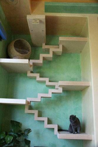 katzenhaus so sieht es aus wenn katzen ein haus. Black Bedroom Furniture Sets. Home Design Ideas