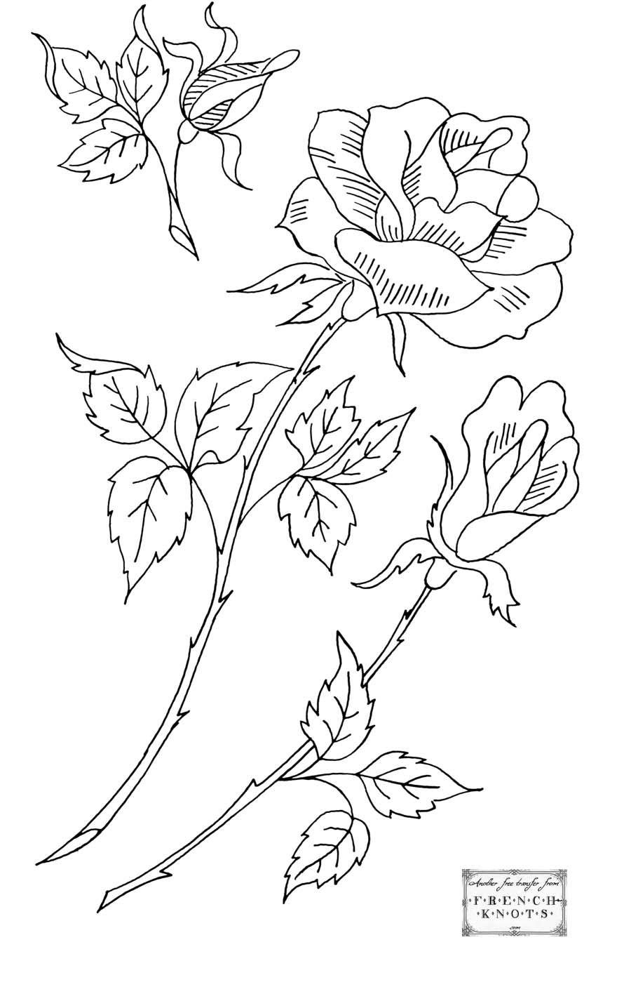 Roses - Embroidery Patterns | dibujos | Bordado, Dibujos para bordar ...