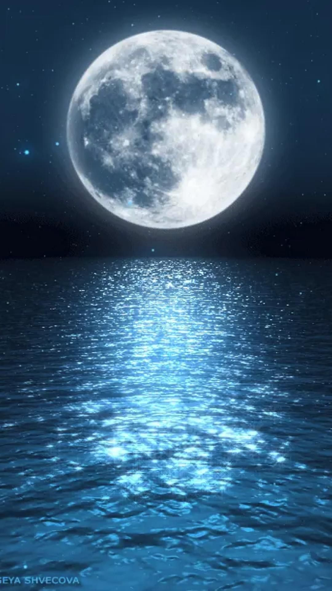 Sweet Dreams 🌙⭐️