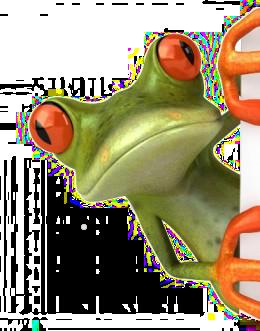 frog - Buscar con Google