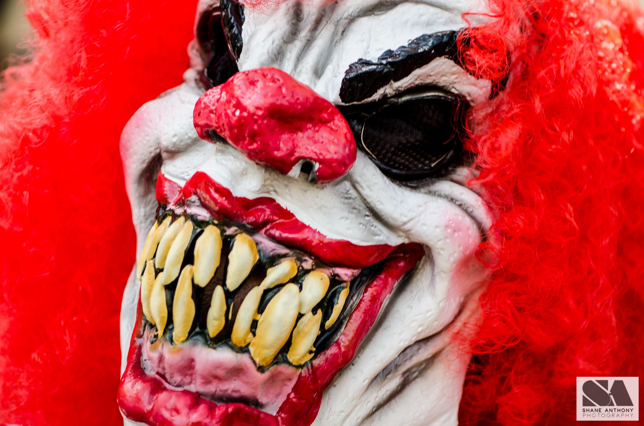 Zombies blood guts and brains at Melbourne zombie shuffle 2014. Evil clown