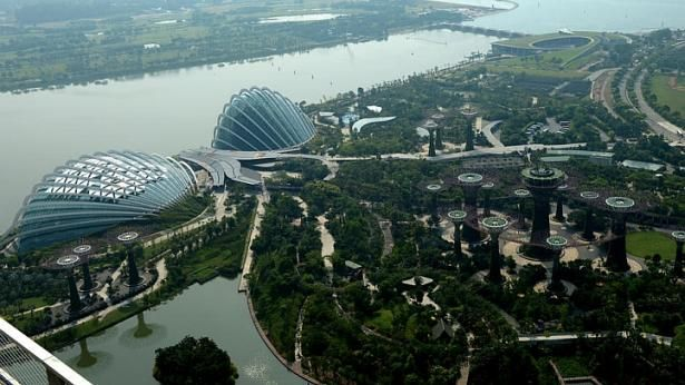 25bd585a5f21ff41ca92b0886ed6c1bc - Dining At Canopy Gardens By The Bay