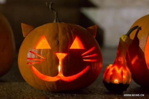 Halloween pumpkin lanterns displayed in Budapest