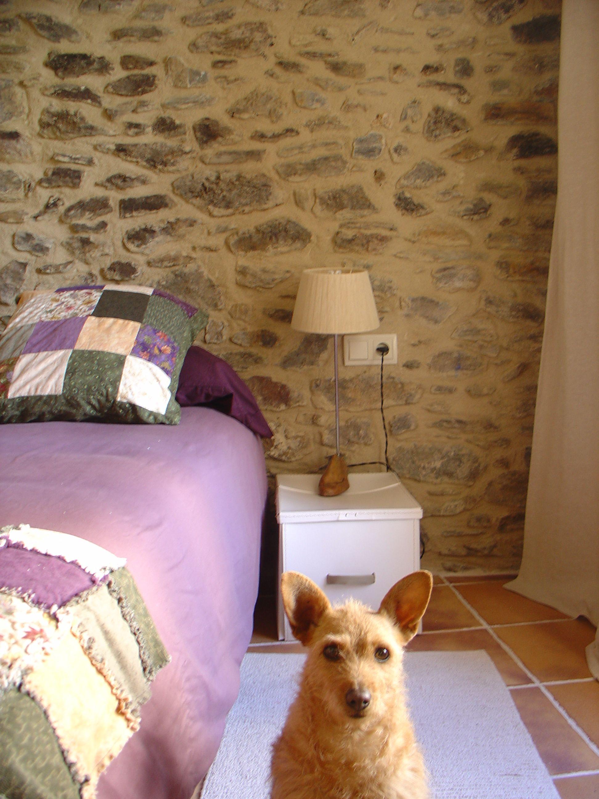 l'habitació de pedra amb el cobrellit de franeles... i la Nineta