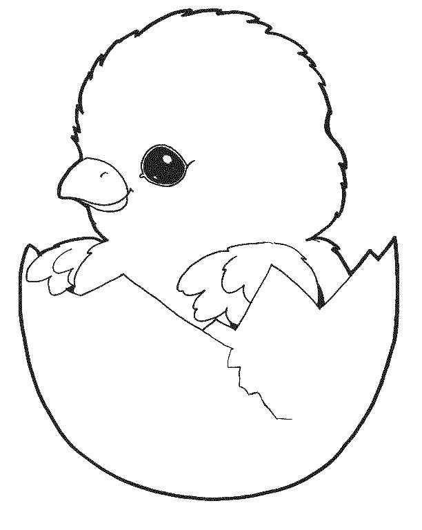 Картинки по запросу цыпленок в скорлупе раскраска