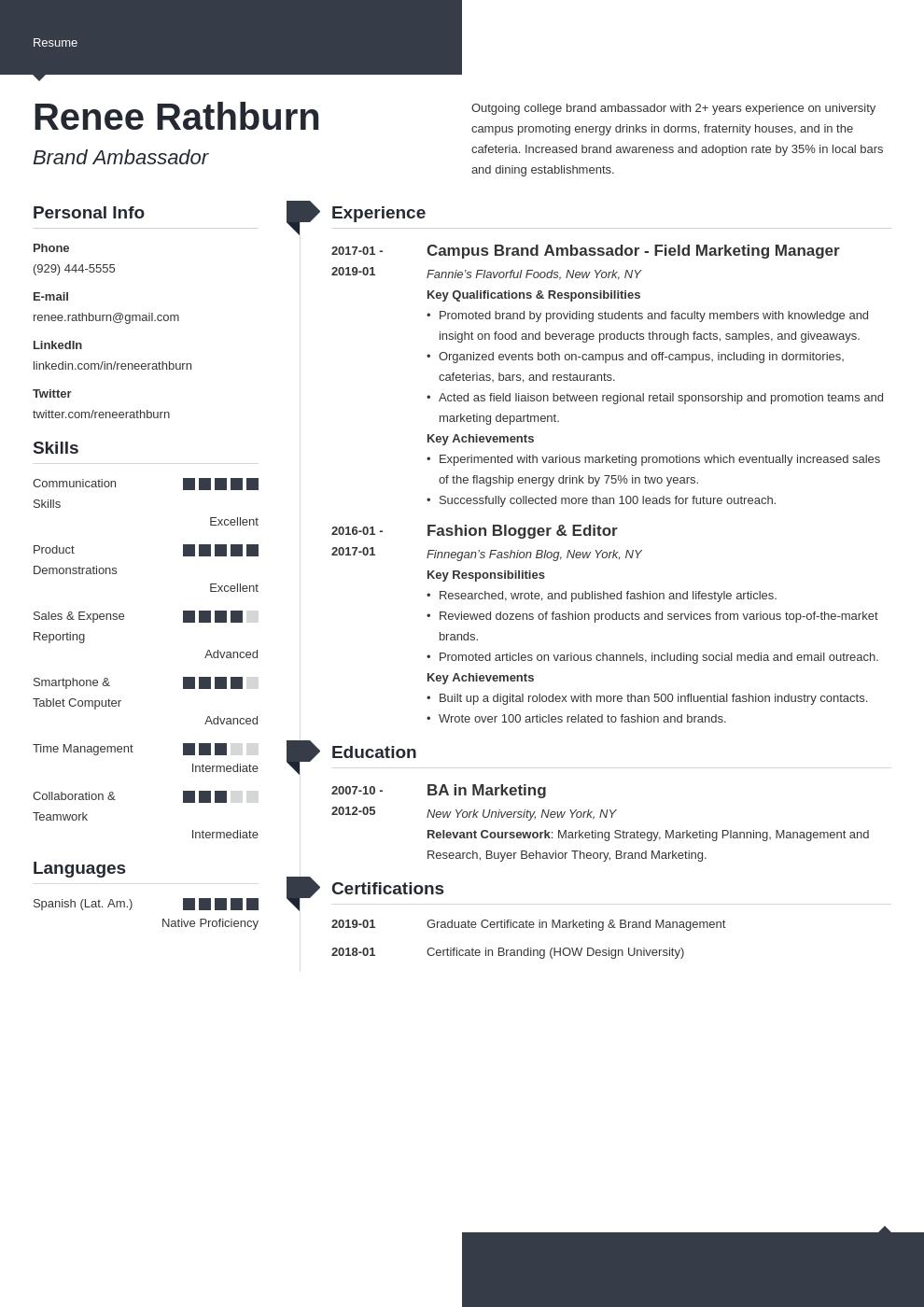 brand ambassador resume example template modern in 2020